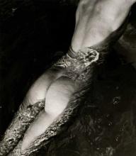 © Louise Dahl-Wolfe
