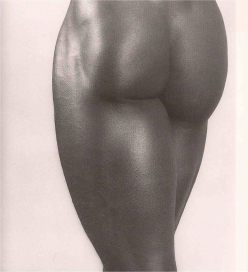 © Robert Mapplethorpe