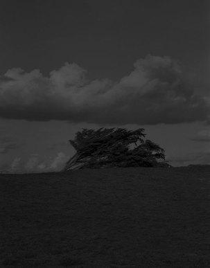 La pesanteur du lieu © Israel Ariño